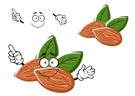 almonds: Happy sweet almonds cartoon character with nuts and green leaves showing upward, for agriculture or healthy food design