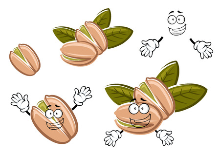 Funny roasted pistachio seeds in shells cartoon characters with green nuts and fresh leaves. For snack, nuts or agriculture design