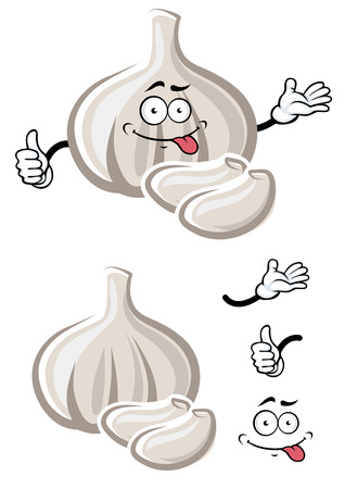 fresh garlic: Cartoon ripe bulb of white garlic vegetable cartoon character with spicy cloves and funny teasing face