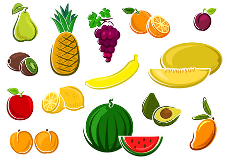pear: Fresh juicy watermelon, apple, kiwi, orange, lemon, grape, avocado, mango, melon, banana, pineapple, plum, pear and peaches fruits. For agriculture or healthy food design Illustration