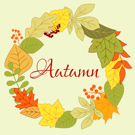 shrub: Autumnal foliage round frame with orange, yellow and green leaves, viburnum berries and shrub seeds