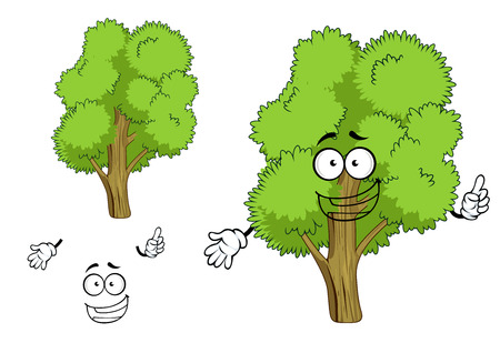 deciduous: Cartoon deciduous green tree character with joyful face, showing upward. Isolated on white background