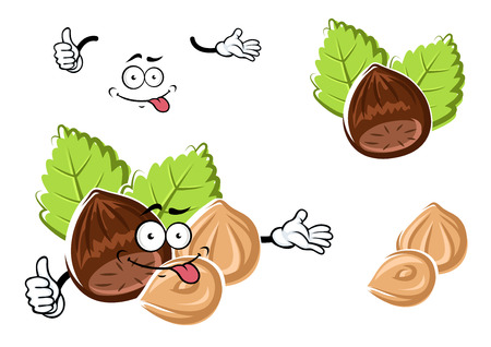 hazelnut: Cartoon hazelnut character with whole and peeled nuts on green leaves isolated on white. For snack or confectionery design
