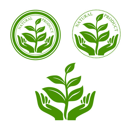 manos logo: Producto natural símbolo verde con las manos sosteniendo delicado brote planta, enmarcado por los sellos redondos, para el paquete o promoción de diseño