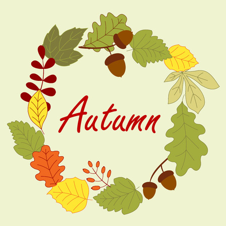 acorn: Autumnal frame composed by leaves, dry acorns and forest berries on background
