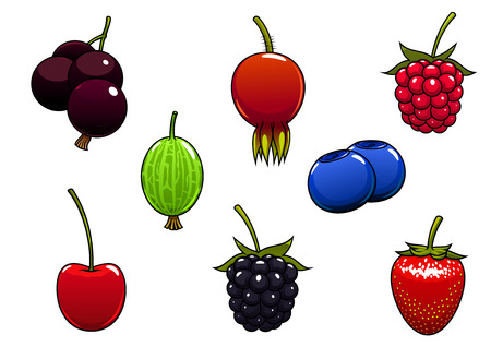 briar: Sweet ripe strawberry, blackberry, raspberry, cherry, black currant, blueberry, gooseberry and briar fruits berries isolated on white background