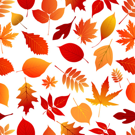 leafage: Autumn red and orange leaves seamless pattern for seasonal or holiday design Illustration