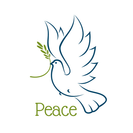 religions: Flying dove or pigeon with olive branch and elegant curved wings isolated on white background. For peace or religion concept Illustration