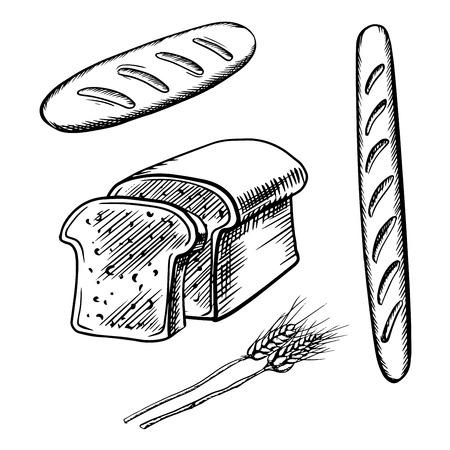 sliced: Bosquejo de pan de molde, pan largo y baguette con espigas de trigo maduro. Para una alimentaci�n sana o el dise�o de la panader�a