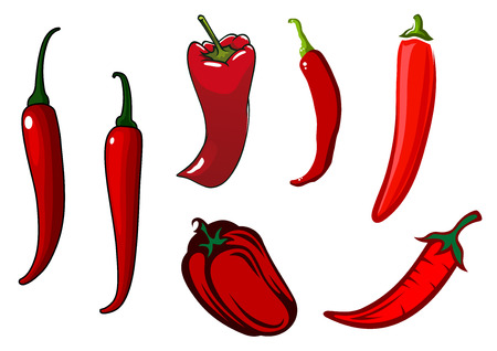 stalks: Red hot chilli, cayenne and sweet bell peppers vegetables with green curved stalks, for oriental cuisine or healthy vegetarian food design