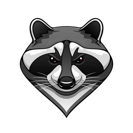 Cartoon wild raccoon animal mascot for sport team or wildlife themes isolated on white Ilustração