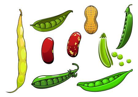 新鮮なマメ科植物と野菜のエンドウ豆ポッド、長いと小豆、ピーナッツを漫画します。