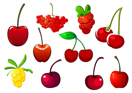 currants: Colored fresh berry icons with cherries, rowan and red and white currants, isolated on white Illustration
