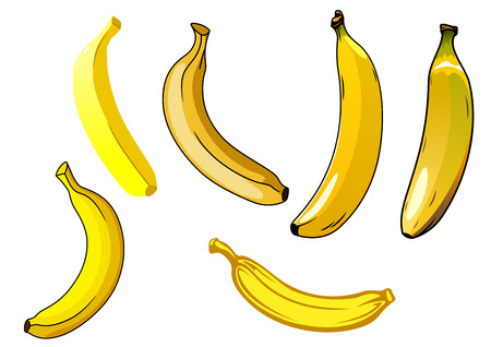 diet food: Fresh ripe yellow banana fruits in different orientations for a healthy food or diet themes Illustration