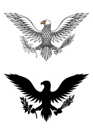 bald: American eagle holding an olive branch and arrows symbolic of war and peace Illustration