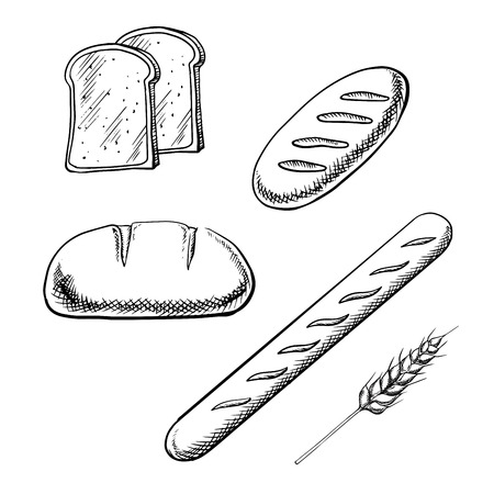 french toast: Toast bread slices, long loaves and french baguette with wheat spikelet isolated on white background. Outline sketch style icons Illustration