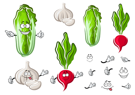 cloves: Funny cartoon fresh chinese cabbage, garlic bulb with cloves and radish vegetables for agriculture or organic vegetarian food theme