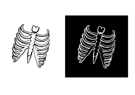 rib cage: X-Ray and skeleton of human rib cage with ribs and part of spine in outline sketch style, for healthcare concept design