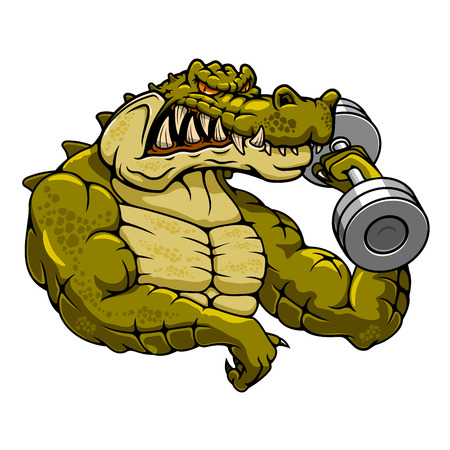 Strong muscular crocodile bodybuilder cartoon mascot with dumbbell for fitness or gym mascot theme Stock Vector - 44975995