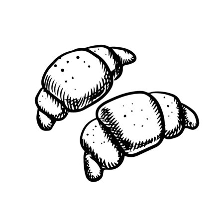 traditional french: Traditional french croissants with crispy crust isolated on white background in sketch style