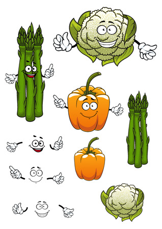 healthful: Cartoon healthful green asparagus, cauliflower and orange bell pepper vegetables characters isolated on white background, for vegetarian food or agriculture theme