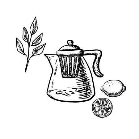 infuser: Glass teapot with infuser strainer, fresh twig of tea bush, whole and sliced lemon fruit isolated on white background. Sketch style
