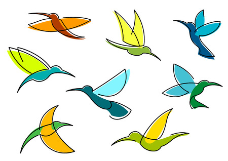 hover: Bright hummingbirds in flight with colorful plumage in orange, blue and green flowing lines isolated on white background