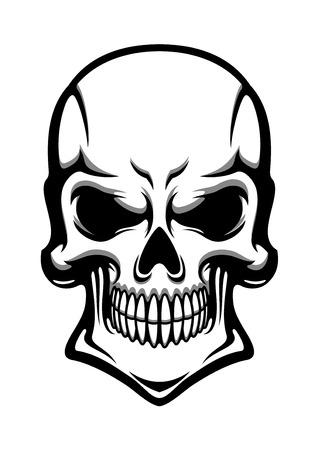 calavera caricatura: Cr�neo humano enojado con la sonrisa misteriosa aislada en el fondo blanco. Para la camiseta o el dise�o del tatuaje, estilo de dibujos animados