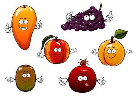 Cartoon ripe purple grape, tropical mango and kiwi, peach, apricot and pomegranate fruits. For dessert or agriculture themes