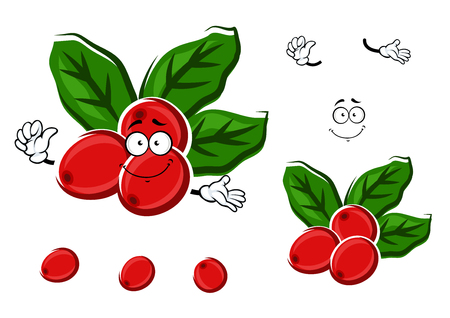 beans: Ripe red berries of arabica coffee beans cartoon character with fresh green leaves, isolated on white Illustration