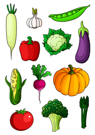 in peas: Colorful cartoon healthy vegetables with pepper, eggplant and garlic, tomato and pumpkin, radish and asparagus, broccoli and corn, cauliflower and pea. Isolated on white background
