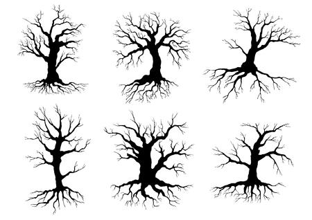 Verschillende zwarte bladerloze bladverliezende winter boom silhouetten met wortels, geïsoleerd op wit