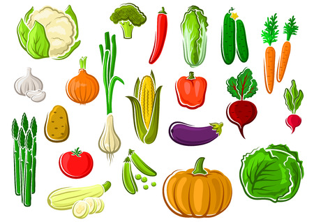 Assorted farm vegetables set with green leaves and haulms, for vegetarian food or agriculture theme