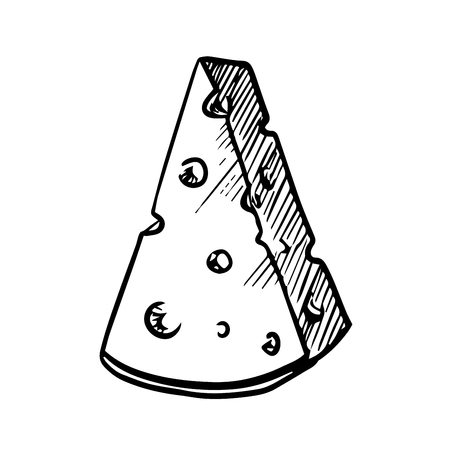 edam: Slice of natural cheese with holes, for healthy nutrition or agriculture design. sketch image