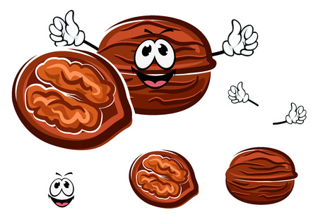 Happy brown cartoon walnut in a whole and halved form with the shell opened to reveal the nut with, isolated on white