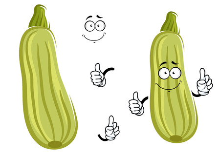 pale green: Smiling cartoon zucchini vegetable character with striped pale green peel giving thumb up. Isolated on white background