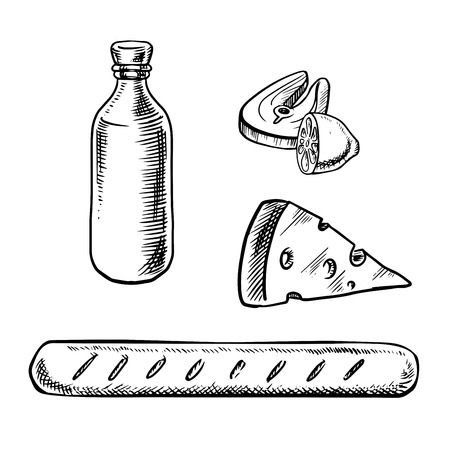 wine and cheese: Traditional french food and drinks with bottle of wine, cheese, baguette, salmon steak and lemon fruit, for national cuisine theme. Sketch style