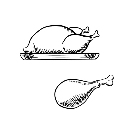 Whole roasted chicken or turkey on tray and fried chicken leg, for food themes design. Sketch icons