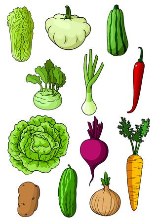 cebolla: Col fresca granja, pepino, zanahoria, cebolla, papa, chile, col china, cebolla de verdeo, el calabac�n, remolacha, calabaza pattypan y hortalizas colinabo. Para la alimentaci�n y la agricultura vegetarianas temas de cosecha
