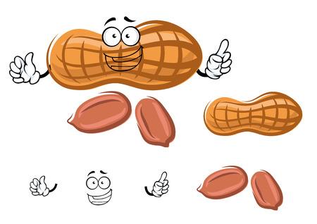 peeled: Joyful fresh peanut cartoon character with dry shell and peeled kernels, isolated on white background Illustration
