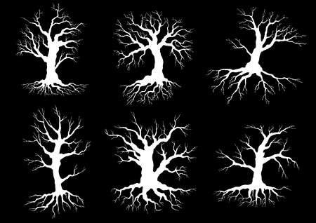 leafless: Dead old trees white silhouettes with roots and curved leafless branches on black background, for nature or ecology themes design Illustration