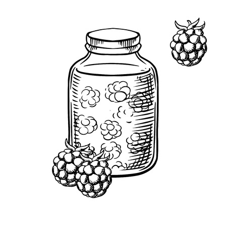 confiture: Homemade sweet raspberry jam in a glass jar with fresh raspberry fruits, for agriculture harvesting design. Sketch image