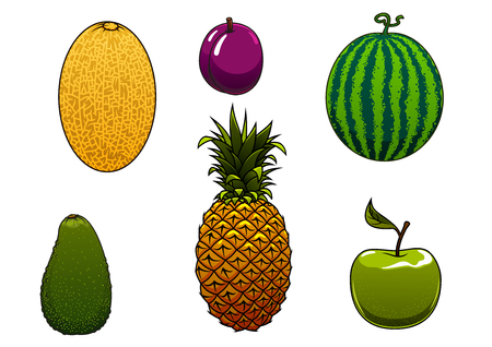 pineapple juice: Sweet juicy watermelon, green apple, pineapple, yellow melon, avocado and plum fruits isolated on white background Illustration