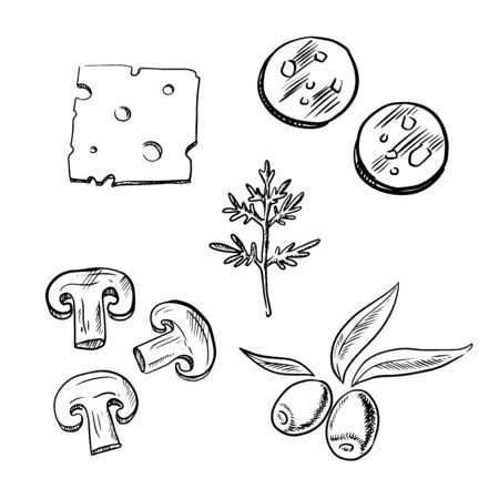 cheese: Italian pizza topping ingredients sketch icons with slices of cheese, salami sausage, mushroom, olive fruits and fresh dill