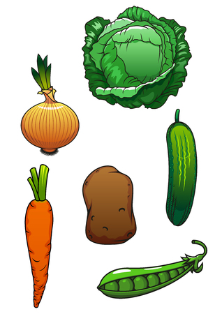 cartoon carrot: Bright juicy green cucumber, cabbage, pea pod, sweet orange carrot, onion bulb and potato vegetables for agriculture harvest design. Cartoon style Illustration