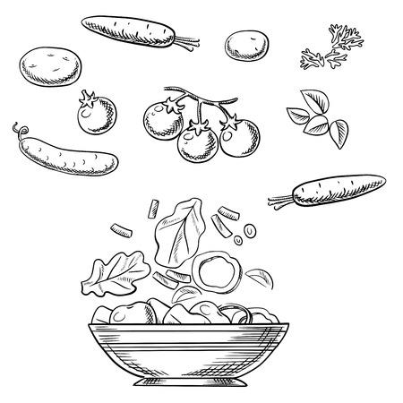 tomate cherry: Cocinar boceto ensalada vegetariana con tomates frescos cherry, zanahorias, pepino, patatas, hierbas picantes y un tazón de ancho con ingredientes en rodajas. Para el libro de recetas o diseño del menú