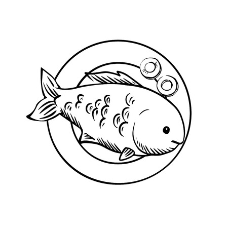 dorado: Spicy tasty grilled ocean fish served on plate with slices of fresh carrot, for seafood menu design. Sketch image