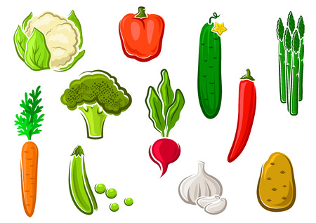 sweet pea: Natural healthy carrot, potato, cucumber, chilli and bell peppers, sweet pea, cauliflower, radish, broccoli, asparagus and garlic vegetables icons. Isolated on white, for vegetarian food themes
