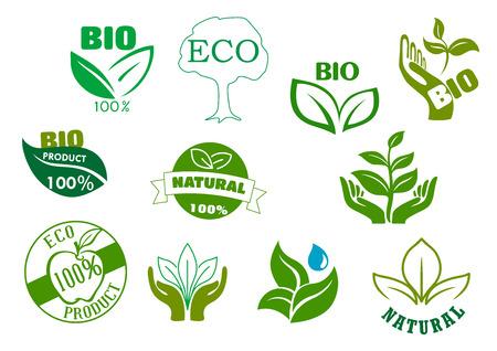 Bio, Öko und natürlichen Produkten Symbole mit grünen Blättern in den Händen, Wassertropfen, gesunde Bio-Apfelfrüchte und Baum. Für die Lebensmittelverpackungsdesign Illustration