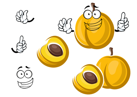 apricot kernels: Bright yellow sweet apricot fruit cartoon character with juicy aroma flesh and brown seed, showing attention gesture with happy smile, for healthy vegetarian food design